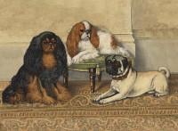 Stunning Pug & Cavalier King Charles Blank Card