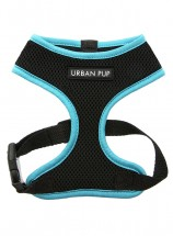 Neon Blue Rimmed Urban Pup Harness