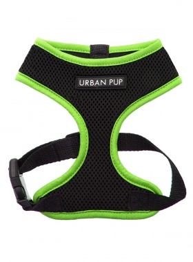 Neon Green Rimmed Urban Pup Harness
