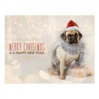 Festive Pug Lola Christmas Postcard