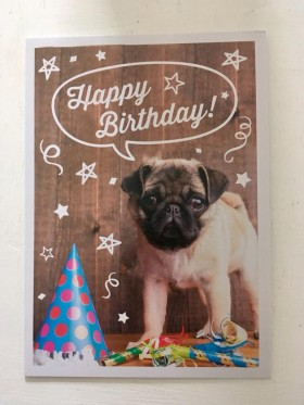 Pug Puppy Birthday Card