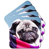Gorgeous Pug  Coaster Set Of 4