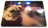 Pug In The City Mouse Mat
