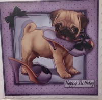 Fawn Pug Birthday Card
