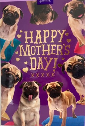 Cute Pug Mothers Day Card