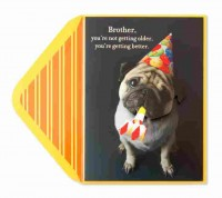 Pug Brother Birthday  Pop Up Card