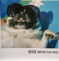 Pug Nephew Birthday Card