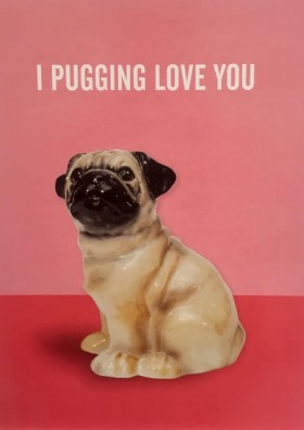 Cute Pug Blank Card For All Occasions