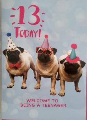 Age 13 Teenager Pug Birthday Card