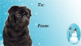 To & From Black Pug Christmas Labels Pack Of Ten