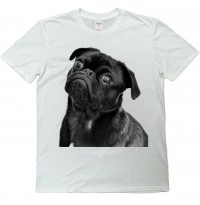 Cute Black Pug Inquisitive Unisex T Shirt