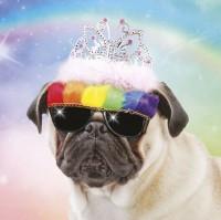 Pug Rainbow Princess Birthday Card