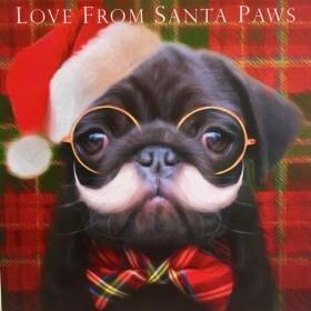 Cute Black Pug Christmas Card