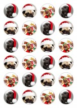 24 Christmas Pug Edible Cupcake Toppers