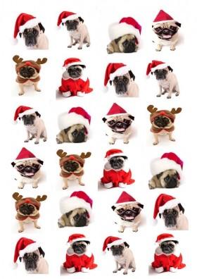 24 Christmas Pug Edible Cupcake Toppers