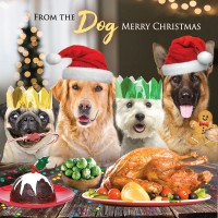 Cute From The Dogs Christmas Card