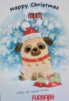 Cute From Your Pug Christmas Card
