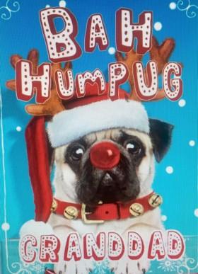 Cute Pug Granddad Christmas Card