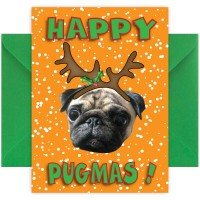 Cute & Funny Pug Christmas Card