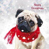Cute  Pug Christmas Card