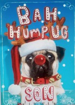 Small Pug Son Christmas Card