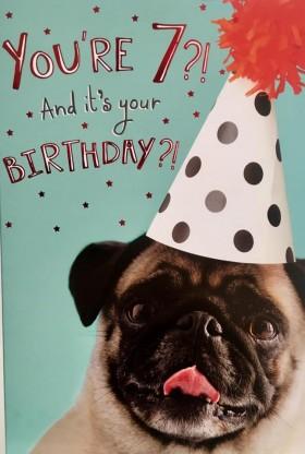 Cute You're 7 Pug Birthday Card