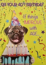 Funny Pug 40th Birthday Card