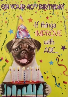 Funny Pug 40th Birthday Card