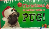 Pug Novelty Christmas Sign