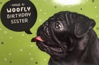 Cute Pug Sister Birthday Card