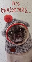 Pug Christmas Money/ Voucher Wallet Card