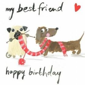 Pug & Dachshund Birthday Card