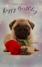 Sweet Pug Puppy Birthday Card