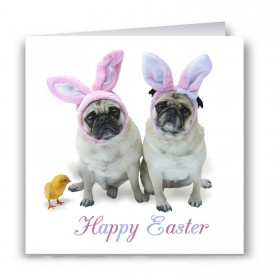 Pug Bunnies Easter Card