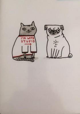Funny Pug & Cat Blank Card By Gemma Correll