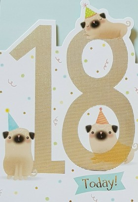 Cute Happy 18th Pug Birthday card