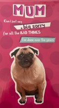 Funny Pug Mothers Day Card