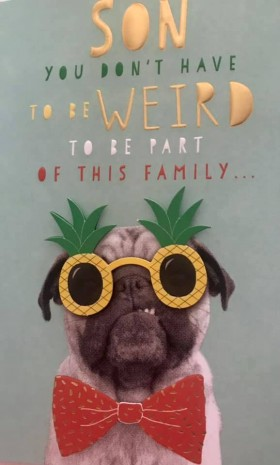 Funny Son Pug Birthday Card