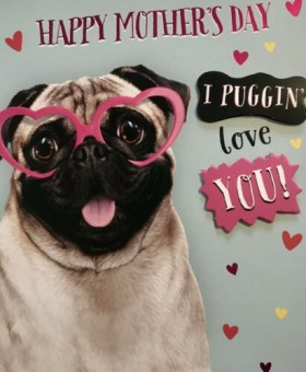 Pug Mothers Day Card