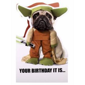 Cute Star Wars Yoda  Birthday Card