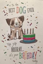 Cute Pug To The Best Dog Ever Birthday Card