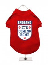 It's Coming Home Red England Unisex T Shirt